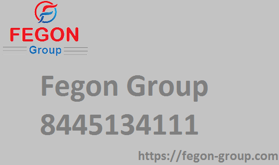 Fegon Group | 8445134111 | Best Network Security Solutions